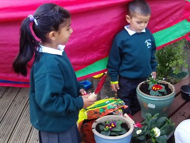 Planting bulbs and plants in the outside area