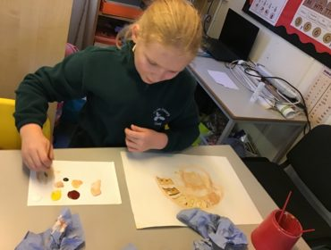 We used acrylics to produce paintings of ammonite fossils