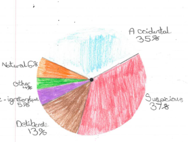 Josh's pie chart showing reasons that bushfires start.